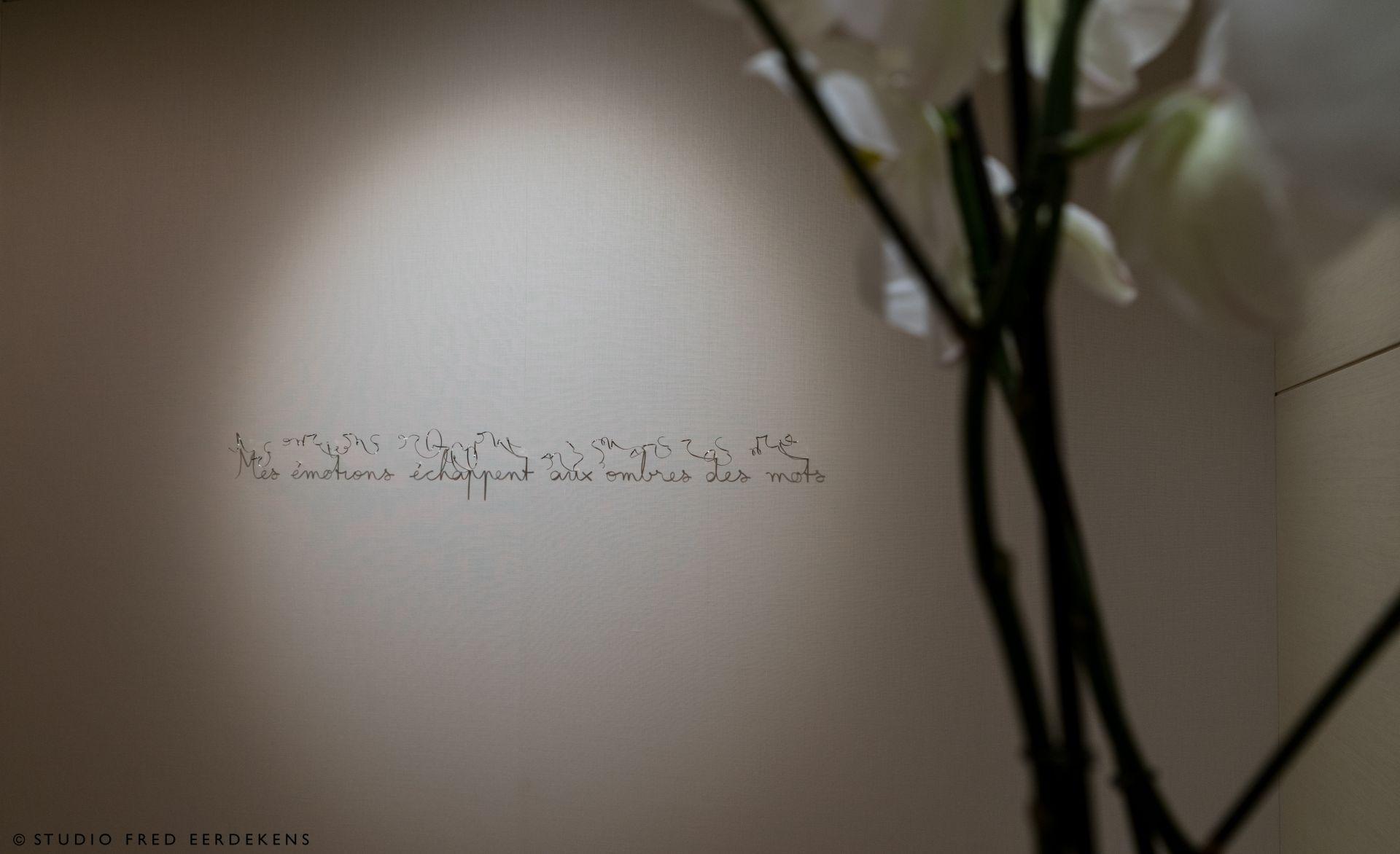 """Mes émotions échappent aux ombres des mots, 2018, Œuvre tirée des """"sentences"""""""